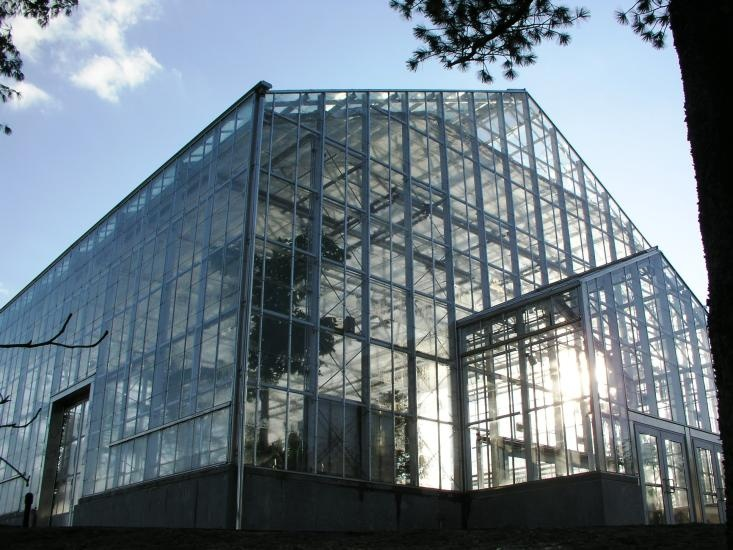 Rough Brothers, provides services like install, test, and service each component of greenhouse construction and greenhouse installation for commercial greenhouses. We are also provide facilities for wholesale growers, nurseries, retail garden centers, conservatories, and institutions such as universities and research facilities.