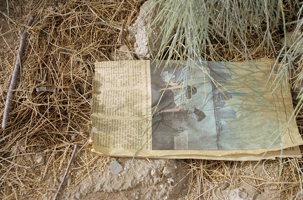 "Photos © Eggleston Artistic Trust/Courtesy Cheim & Read, NY ""Untitled (Newspaper on Ground, Grass, California),"" 2000, by William Eggleston."
