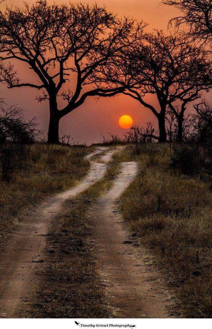 Kruger Park sunset, South Africa