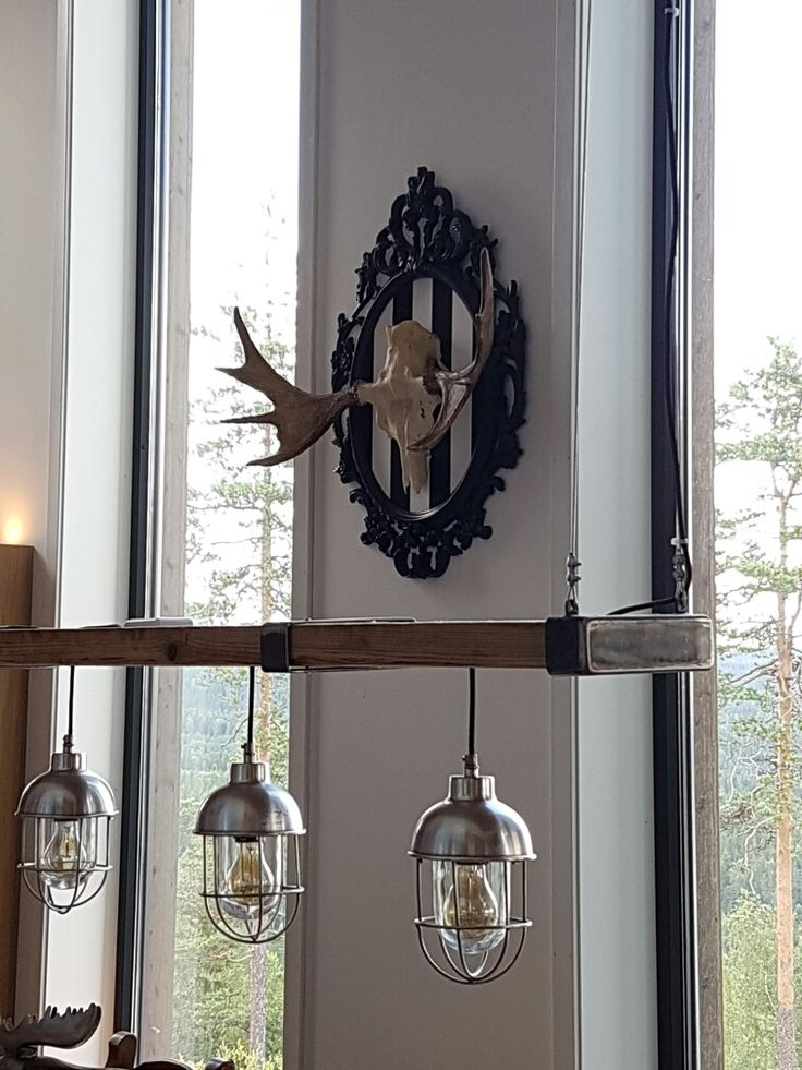 Moose on homemade display