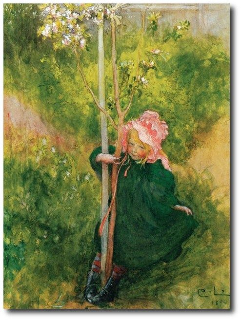 Apple Blossom Art Poster Print By Carl Larsson