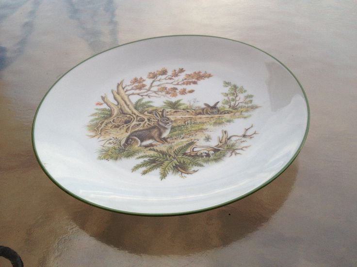 Bunny Plate, Rabbit Plate, Woodland Plate, Bareuther Waldsassen Plate, Naturalistic Plate, Animals Nature Plate, Bunnies Plate, Collectibles by WeFindVintage on Etsy