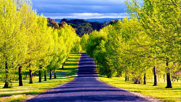 most beautiful scenic wallpapers pathway wallpapers