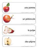 Étiquettes-mots géants-Les pommes