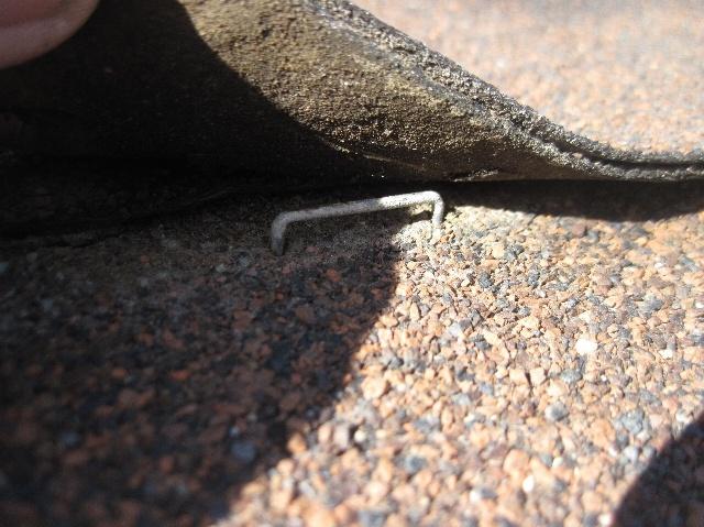 Stapled roof shingles
