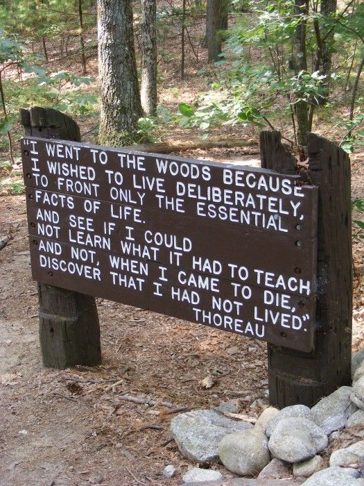 Quote by Henry David Thoreau at Walden Pond in Concord, Massachusetts.