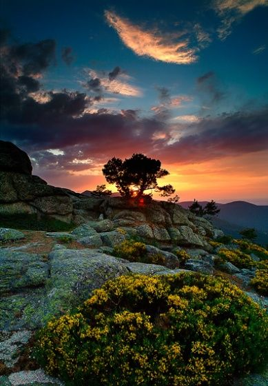 those colors...: Color, Sunsets, Weights Loss Diet, Beautiful, Pictures, Weights Loss Tips, Earth, Landscape, Photo
