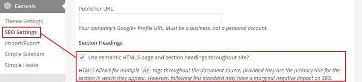 Disabilitare la doppia tag H1 sui temi Genesis HTML5