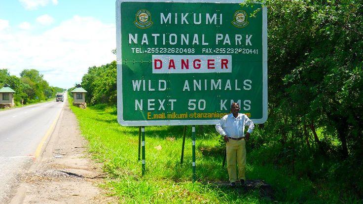 Mikumi National Park & Udzungwa Rain Forest Safari. http://bit.ly/tanzanasafaritours?utm_content=bufferab5ab&utm_medium=social&utm_source=pinterest.com&utm_campaign=buffer