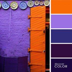 Discover Colour - вдохновлляющие цветовые палитры