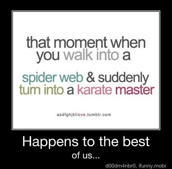 :DSpider Webs, Laugh, Quotes, Karate Master, Funny, Black Belts, So True, True Stories, Spiders Web