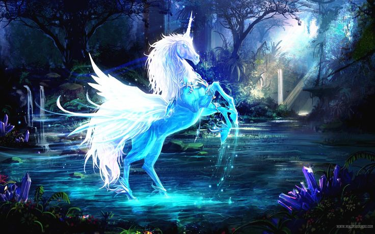 The Unicorn healing system will introduce you to the secret and unique energies of the Mystical Unicorns.