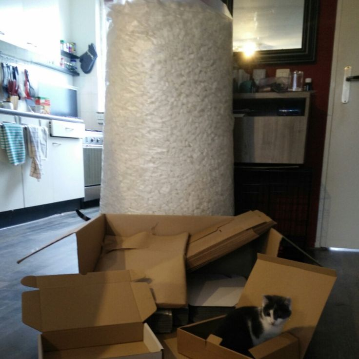 We are ready to ship your new awesome whip! Ps. Kitten not included! ;)