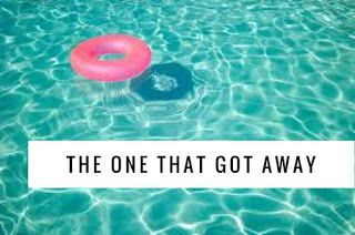 A Stone's Throw from Perfection: The One That Got Away  Autism, elopement issues, swimming