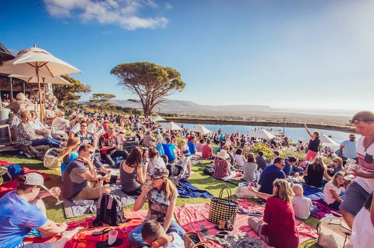 Cape Point Vineyards is the perfect venue for larger functions, and even hosts festivals and markets. #EventRoomSA