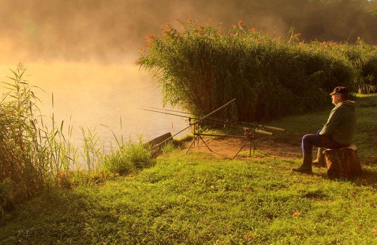 Dr. Pálffy István  Szeptemberi relax Égeresi tó a Vértesben. Munkába menet gyakran megállok itt, 5-10 perc elegendő a feltöltődéshez. Több kép Istvántól: www.facebook.com/palffydr/photos_albums