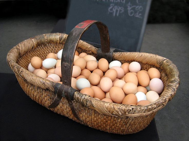 easter egg paper weaving 17 best images about farm fresh eggs on 4321