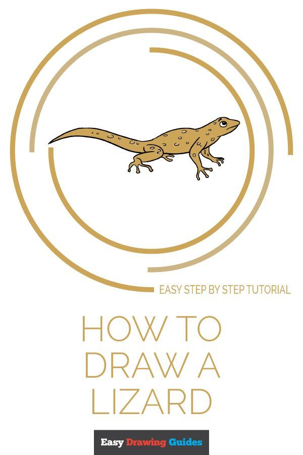 How To Draw A Lizard Really Easy Drawing Tutorial Art Ideas