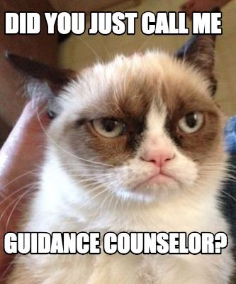 Guidance Grumpy www.counselorup.com