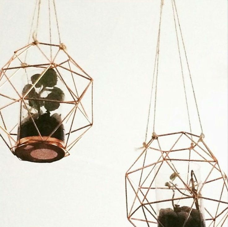 Using Kmart geo candle holder as a hanging plant display.