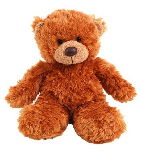 This gorgeous, fluffy fellow makes an ideal side-kick to any of our arrangements. Also available in soft blue and pink, this cuddly teddy would make a lovely gift for any new additions to the family along with our bouquets in the 'New Baby' range.