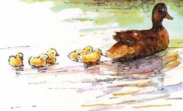 Kinderliedjes - Alle eendjes zwemmen in het water