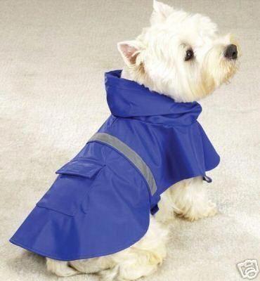 Raincoat Sale In Sri Lanka Dograincoatwithhood Product Id