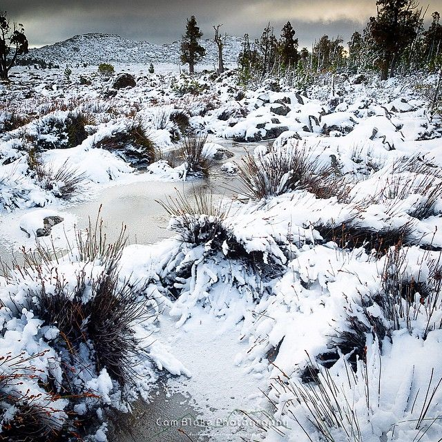 Snow at Pine Lake in the Tasmanian Highlands via http://buff.ly/1KM2Qy2?utm_content=buffer17bf4&utm_medium=social&utm_source=pinterest.com&utm_campaign=buffer #Tasmania