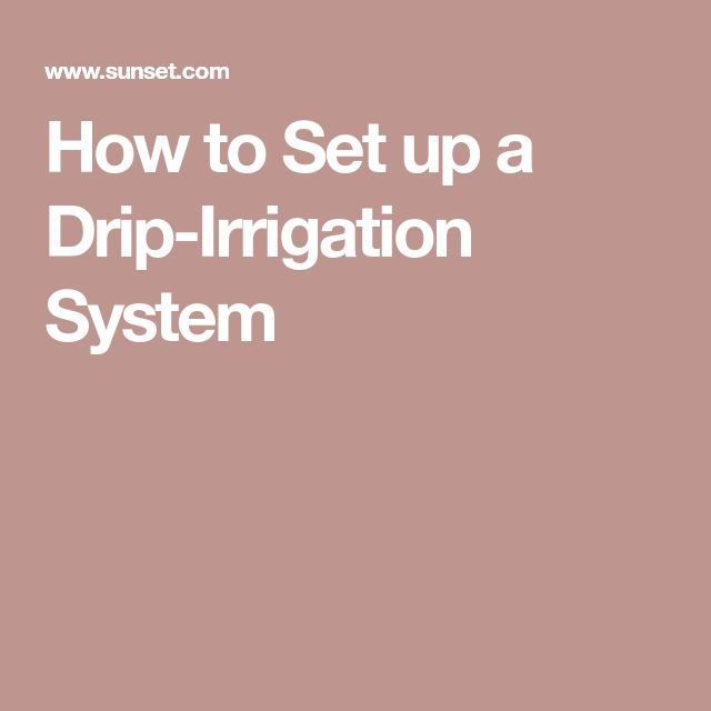 How to Set up a Drip-Irrigation System