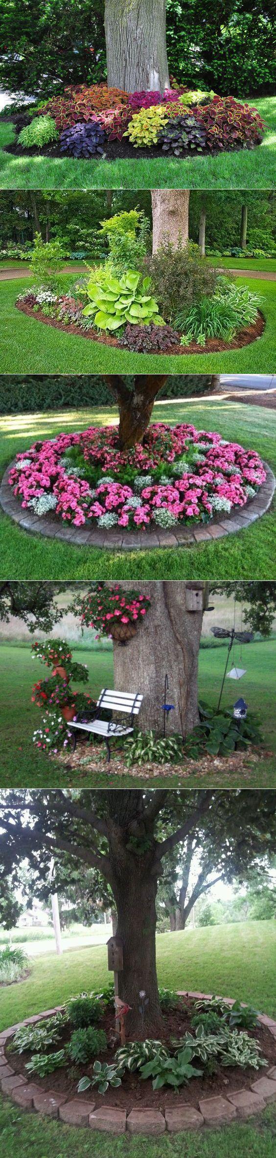 Front Yard Landscaping Ideas – Arbusti e alberi si uniscono per un suggestivo, grande …