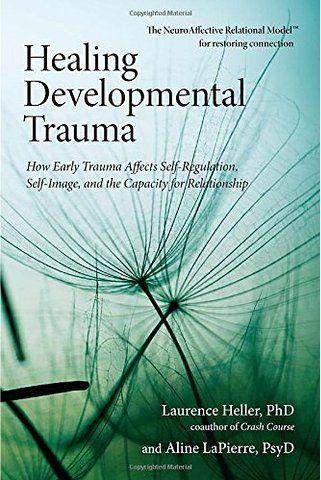 79 melhores imagens de books worth reading 2 no pinterest dor healing developmental trauma how early trauma affects self regulation self image fandeluxe Gallery