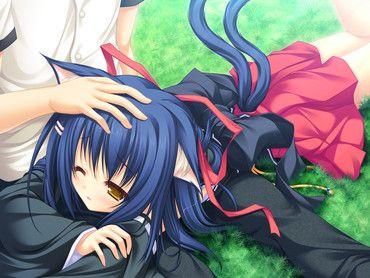 Cute anime neko couples