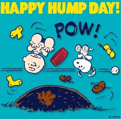 Happy Hump Day Wednesday! Snoopy and Peanuts cartoon via www.Facebook.com/SnoopyCharli Brownsnoopi, Wednesday, Hump Day, Peanut Cartoons, Happy Humpday, Snoopy, Charlie Brown, Brown Gang, Peanut Gang