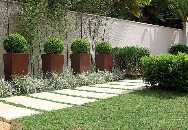 Junto ao muro, bambus-mossô, vasos com buxinhos podados e, no chão, barbas-de-serpente