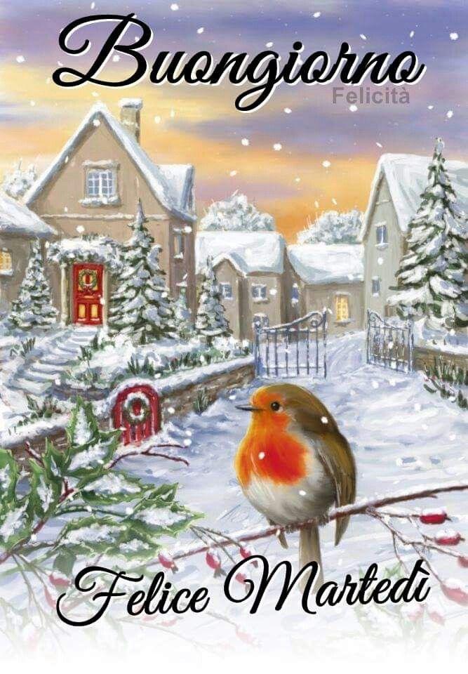 Buongiorno Felice Martedi Inverno Buongiorno Felice Martedi E