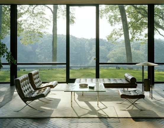 MiesThe View, Philip Johnson, Modern Architecture, House Interiors, Living Room, Glass Houses, Barcelona Chairs, Modern Interiors, Glasses House