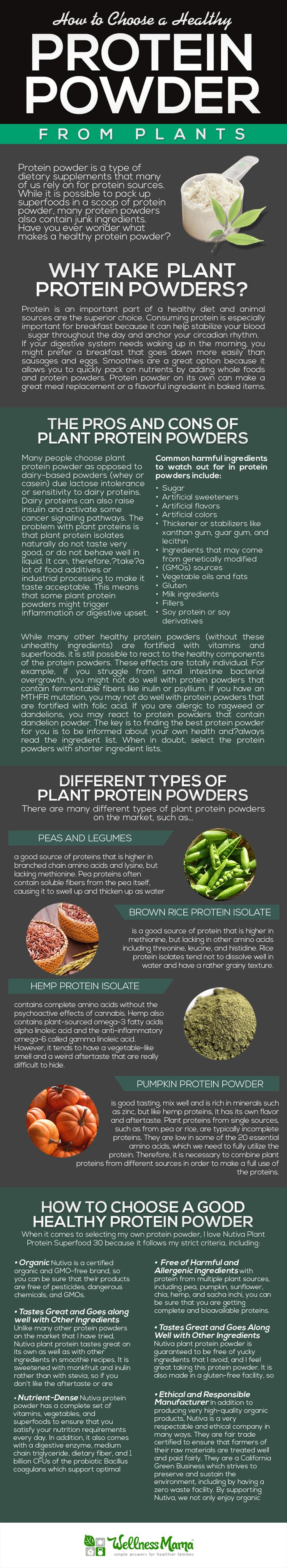 Plant-based protein powder can taste pretty bland and have some sneaky bad ingredients. Find out how to choose a good protein powder without the junk!