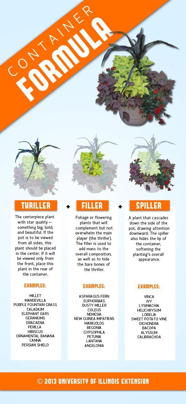 Container Gardening Recipe: Thriller + Filler + Spiller