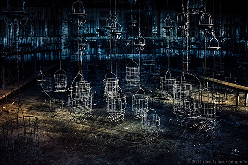 Lost Cages