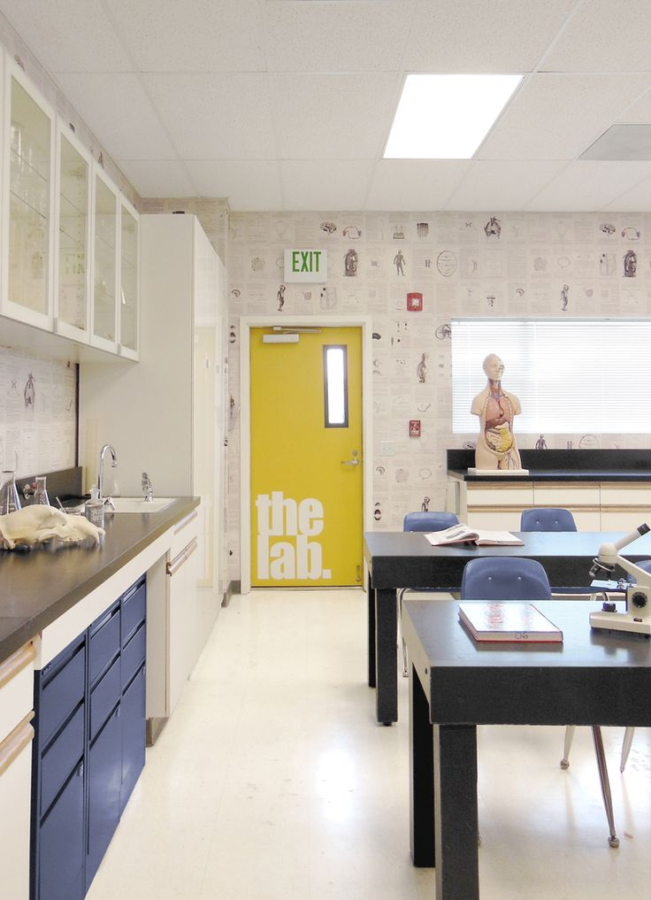 Classroom Lab Design : Best ideas about science lab decorations on pinterest