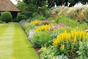 Am nagement paysager jardin l 39 anglaise for Conception jardin anglais