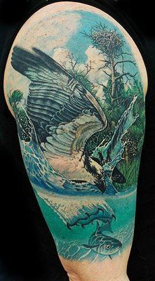 Marine Biology Tattoos By Deano Cook