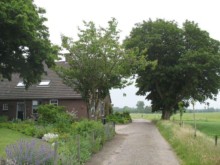 Klompenpad - Stoutenburgerpad: de Engweg