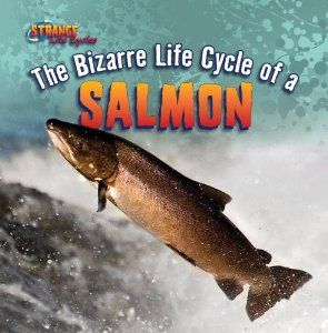 The Bizarre Life Cycle of a Salmon (Strange Life Cycles): Mark Harasymiw: 9781433970603: Amazon.com: Books