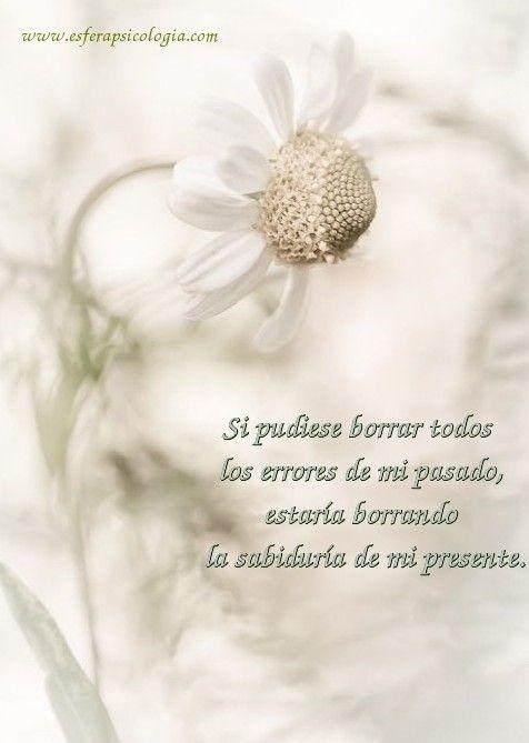 #reflexion #pensamiento #frase #flor