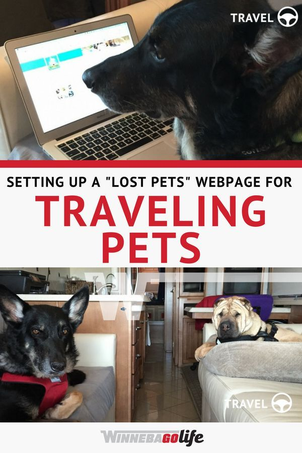 How To Setup A Lost Pet Webpage For Traveling Pets Pet Travel Road Trip Adventure Losing A Pet
