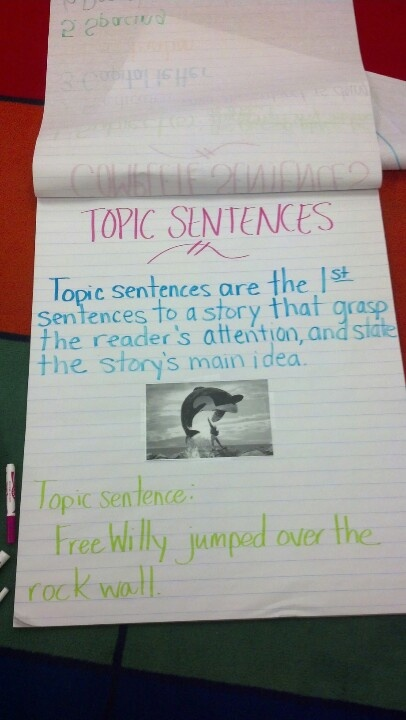 dating topic sentences While the thesis statement summarizes the genre and overall plot, the topic sentence summarizes the overall specifics in your piece itself remembering our movie example, we went from our main idea of a romantic comedy to a thesis statement of two high school sweethearts trying to figure out if they would go to different colleges to pursue.