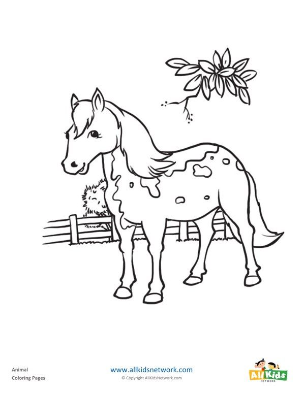 Horse Coloring Page All Kids Network Horse Coloring Pages