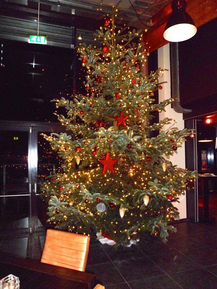 Kerstboom 2014 - Villa Westend