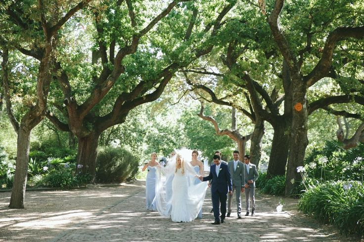 The bridal party under the Nooitgedacht trees in Stellenbosch.